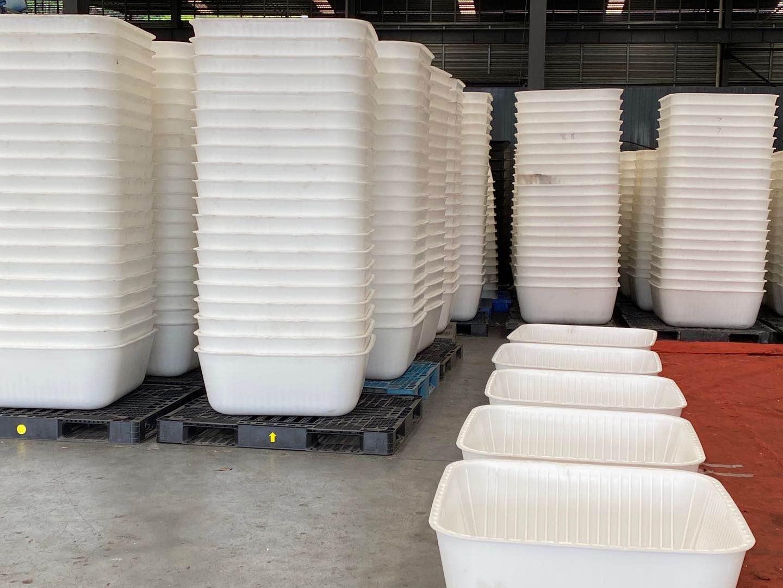 白色塑料模盒