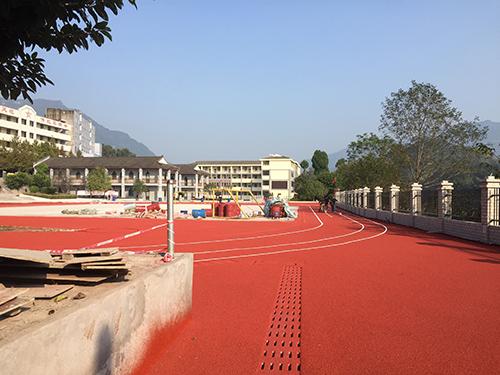 成都青龙瑞豪体育设施工程有限公司