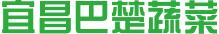 宜昌巴楚蔬菜科技开发有限公司