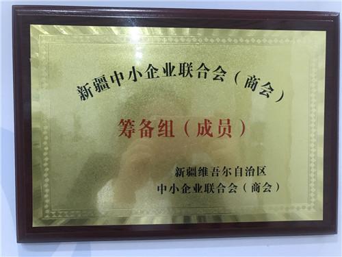 新疆维吾尔族自治区中小企业联合会(商会)筹备组(成员)