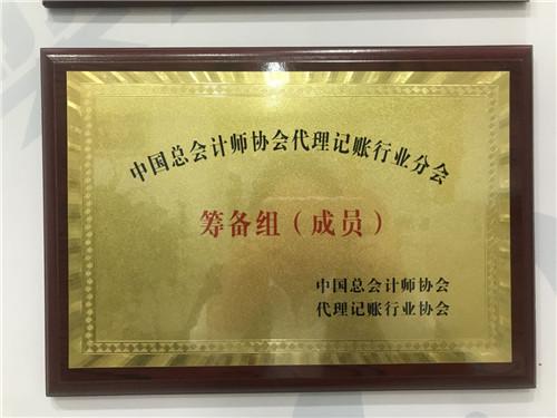 中国会计师协会代理记账行业协会筹备组(成员)