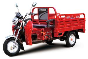 110ZH-T2(GA)电动车