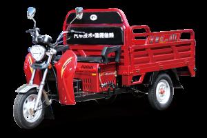 110ZH-T11(GC)电动车