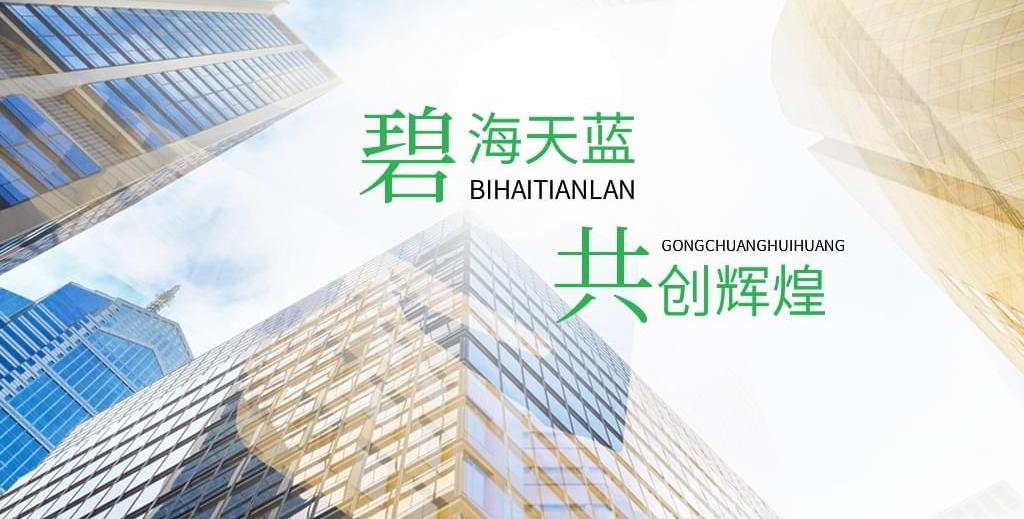 陕西碧海天蓝新能源有限公司