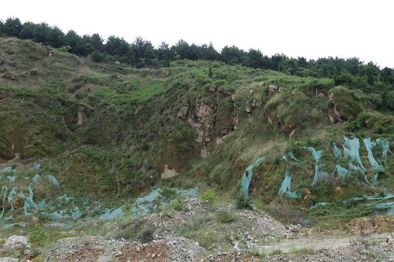 园林绿化土壤改良工程