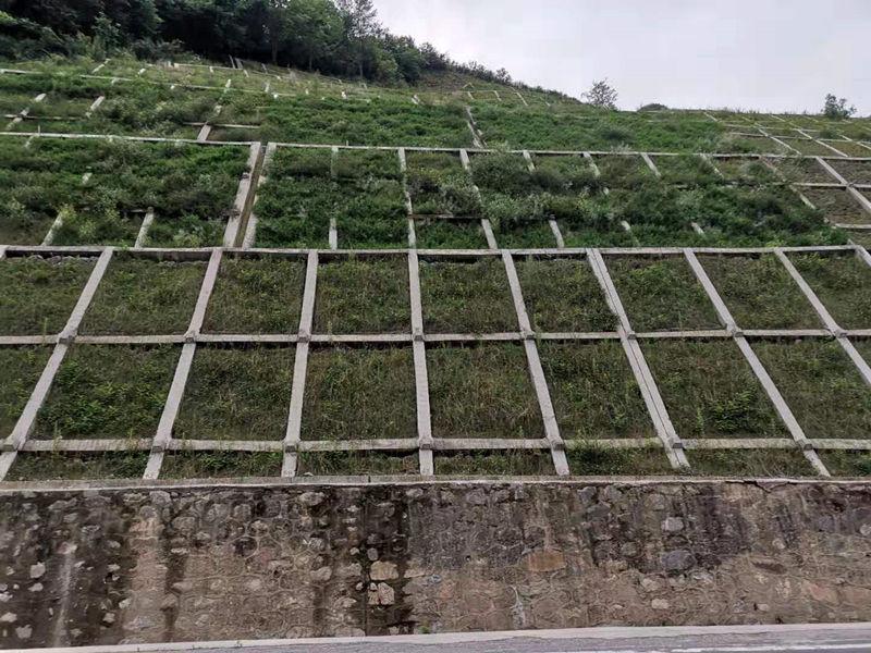 陕西高边坡防护治理工程给大家分享公路边坡绿化客土喷播施工对天气的要求