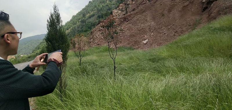 陕西园林绿化施工