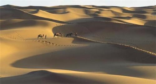 """新疆借沙为""""宝"""" 沙漠特色旅游成""""热点"""""""