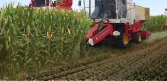 玉米成熟了,玉米收获机是否打开了新大门呢?(上)