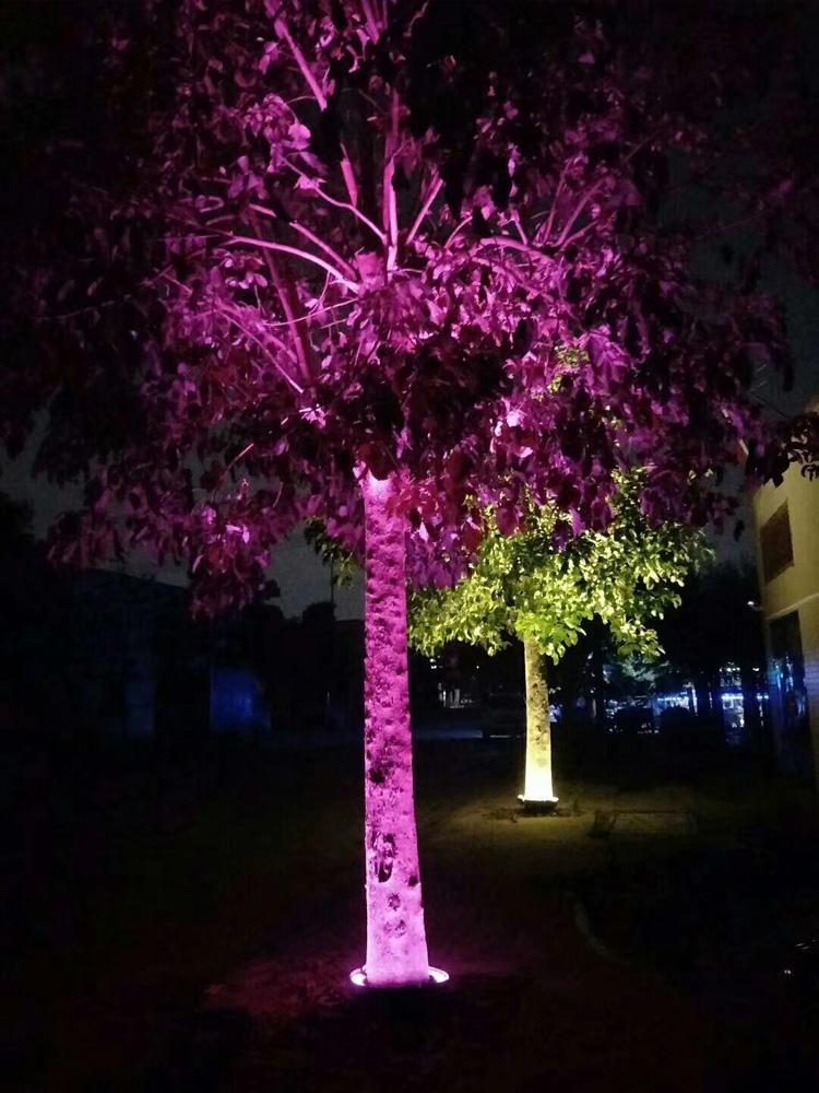 甘肃园林景观亮化