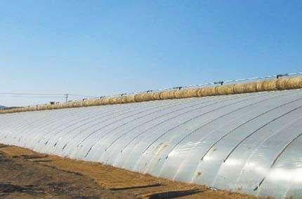 农膜使用效果