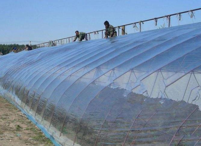 温室大棚膜安装图