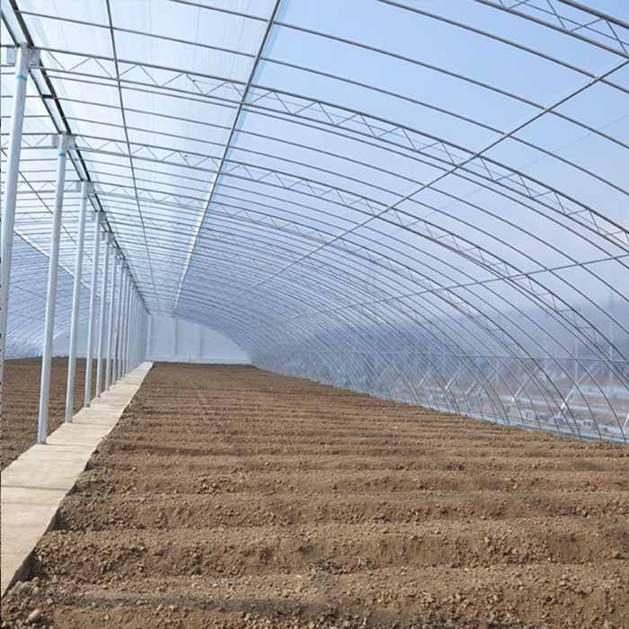 大棚种植需要的棚膜怎么选?有什么样的覆盖方式?润达塑业告诉你