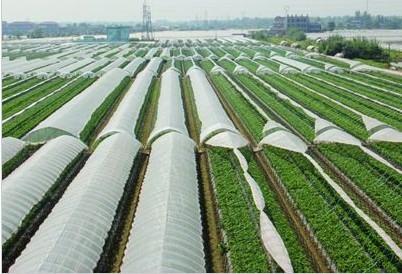 农膜生产厂家