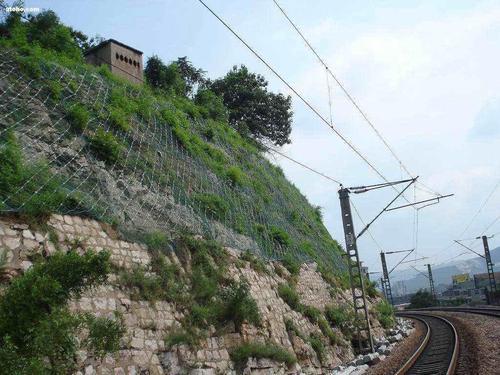 四川边坡防护网厂家蜂巢式网格植草护坡新资讯