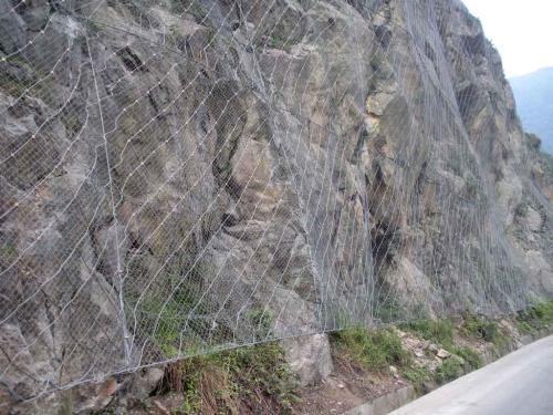 公路主动边坡防护网