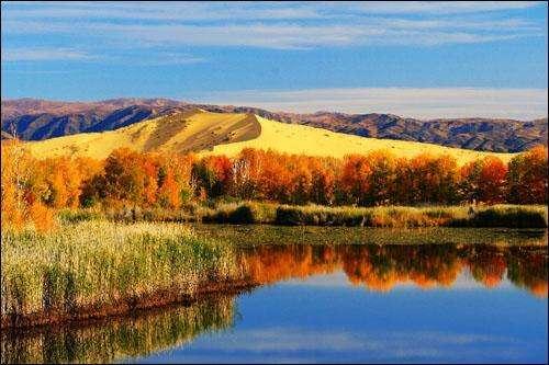 包头市:牢记总书记嘱托 全力为建设北疆亮丽风景线而奋斗