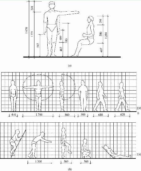 人体尺度和人体活动所需的空间尺度