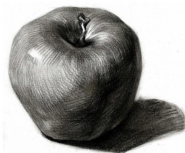 創意素描(10-11歲五年級)