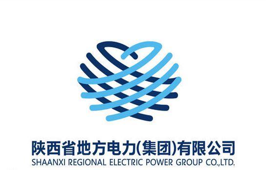 陕西省地方电力