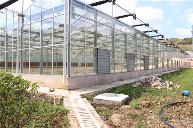 成都温室大棚完工图展示