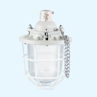 BCD51 series explosion-proof explosion-proof lamp / explosion-proof dust explosion-proof lamp (ⅡB, DIP)
