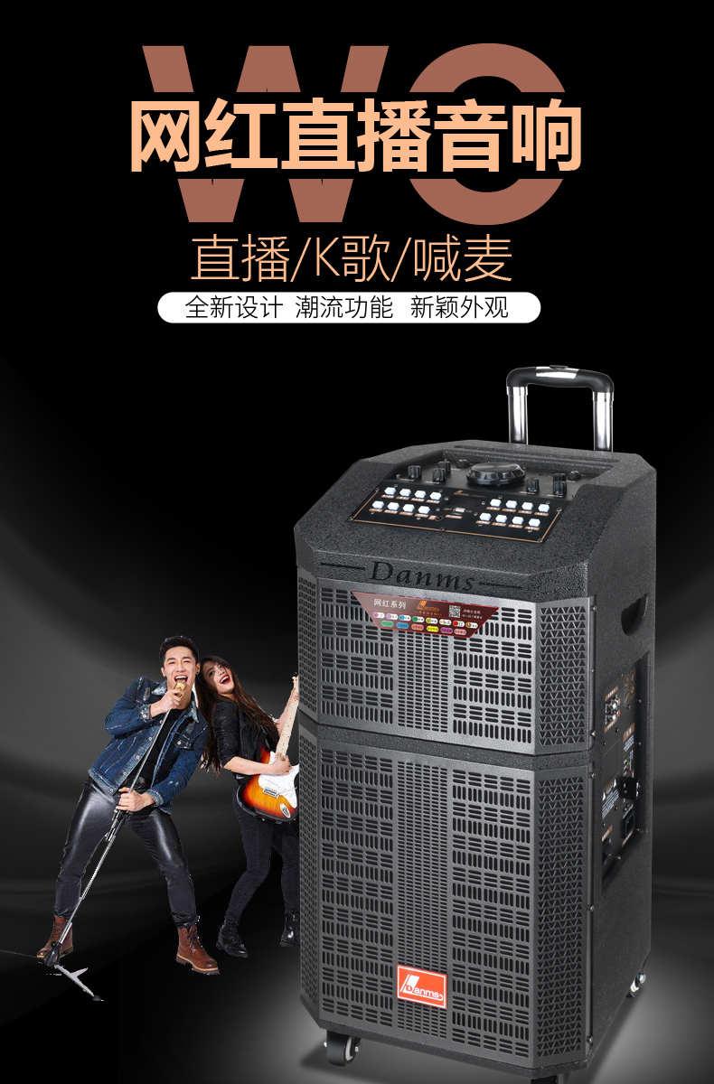 丹唛仕 H-9612(12寸 )