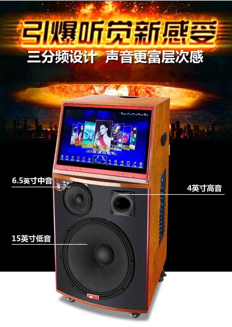 丹唛仕MV-8895A(单15寸)