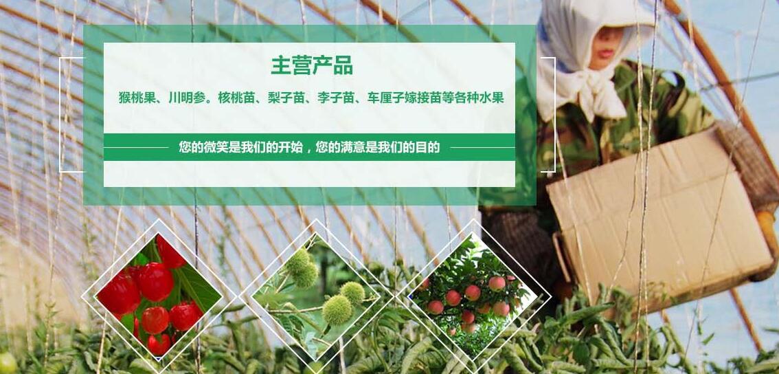 廣元市春萊農業開發有限公司