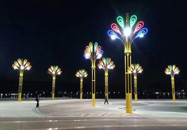 陕西景观灯安装施工现场