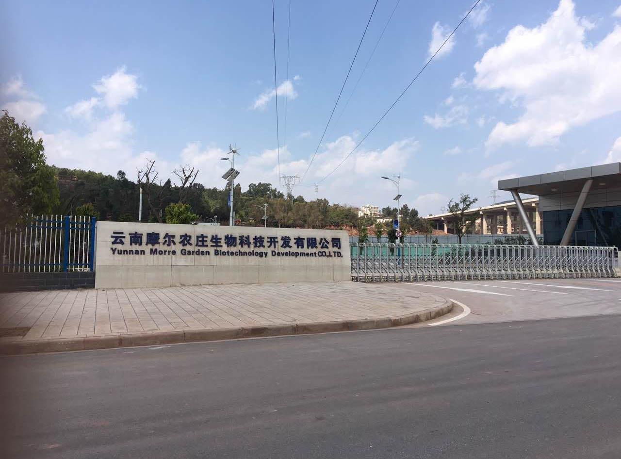 云南摩尔农庄生物科技开发有限公司
