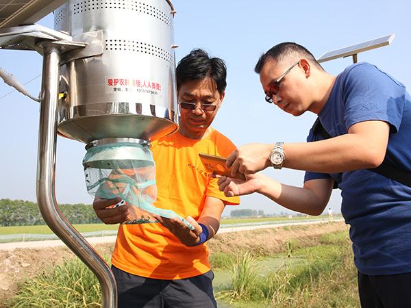 太陽能殺蟲燈實地考察