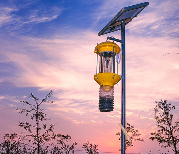 太阳式能普通人工清虫杀虫灯