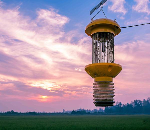 交流電式殺蟲燈