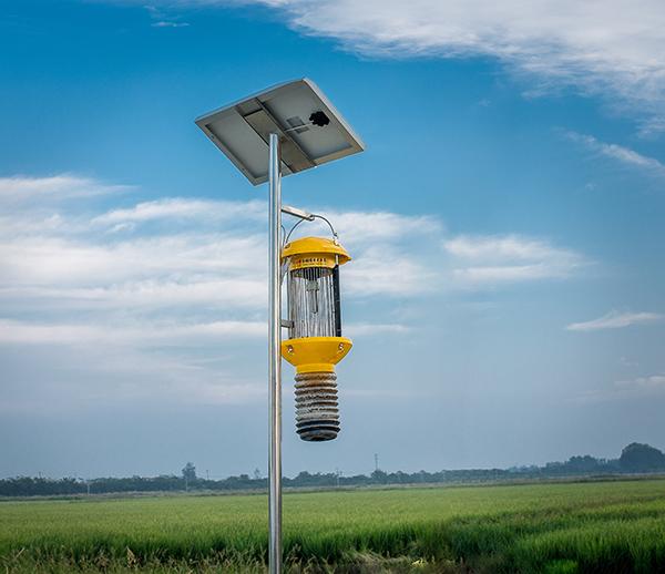 太陽能式自動清蟲殺蟲燈