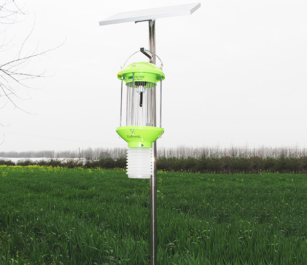 湖北太陽能殺蟲燈