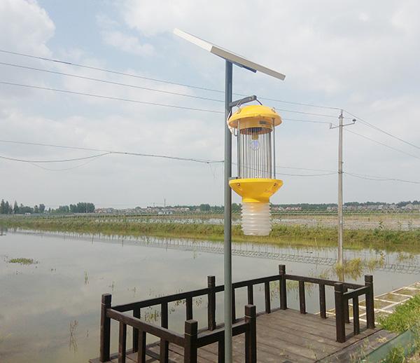 湖北太阳能杀虫灯