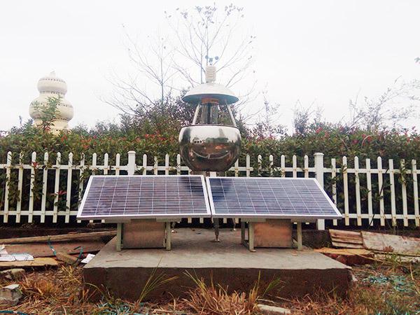太陽能蟲情測報儀-生態公園