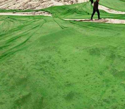 煤场使用防尘网图