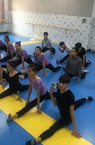 舞蹈艺考对考生有哪些要求
