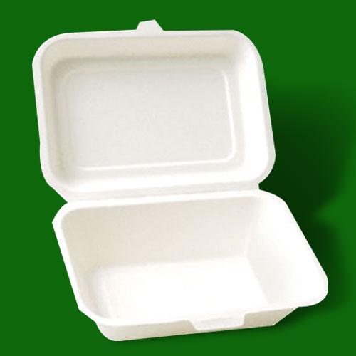 湖北一次性餐盒