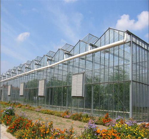 陕西智能玻璃温室大棚
