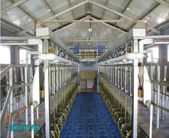 四川畜牧机械-并列式挤奶机