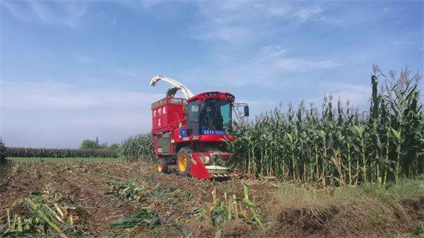 四川青贮机械