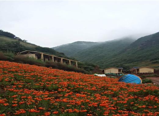 甘南桑稞草原防腐木木屋