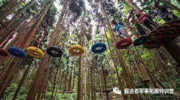 掘进者森林探险