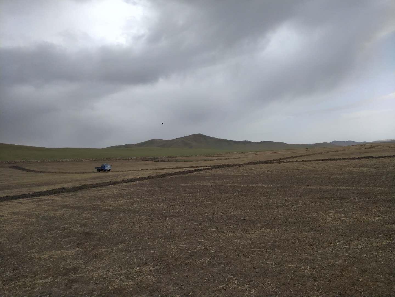 内蒙古节水灌溉