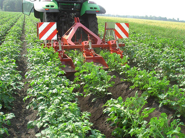 马铃薯中耕施肥机