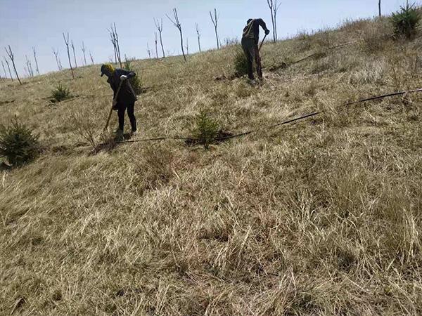 西乌旗小型农田项目