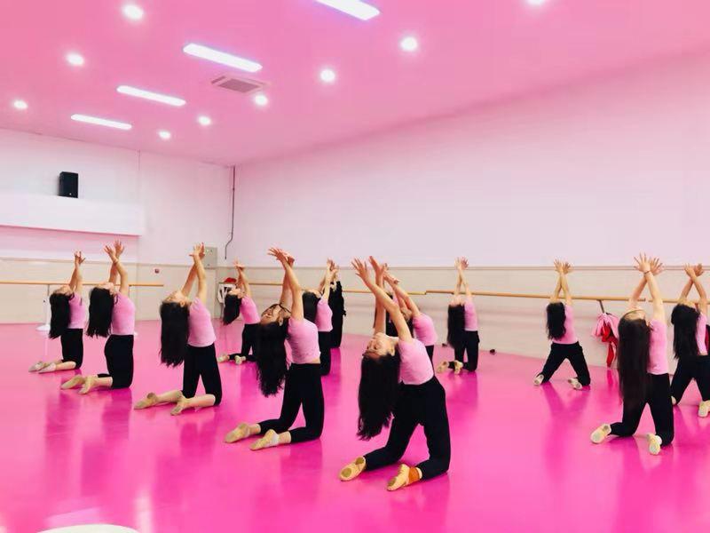 芭蕾基训课